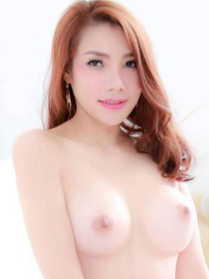 劲索美少女~BELLA (ID:13323) $300